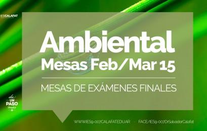 Gestión Ambiental: Mesas finales Feb/Mar 2015