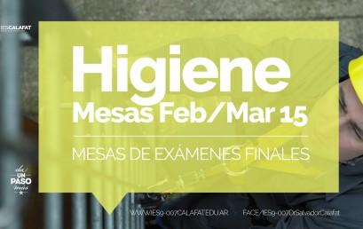 Higiene y Seguridad: Mesas finales Feb/Mar 2015