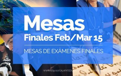 Mesas finales turno Febrero Marzo 2015: Fechas