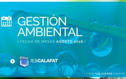 Gestión Ambiental: Mesas Agosto16
