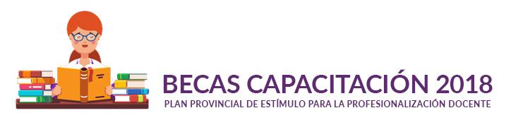 Becas Estimulo para Docentes 2018 / 2019
